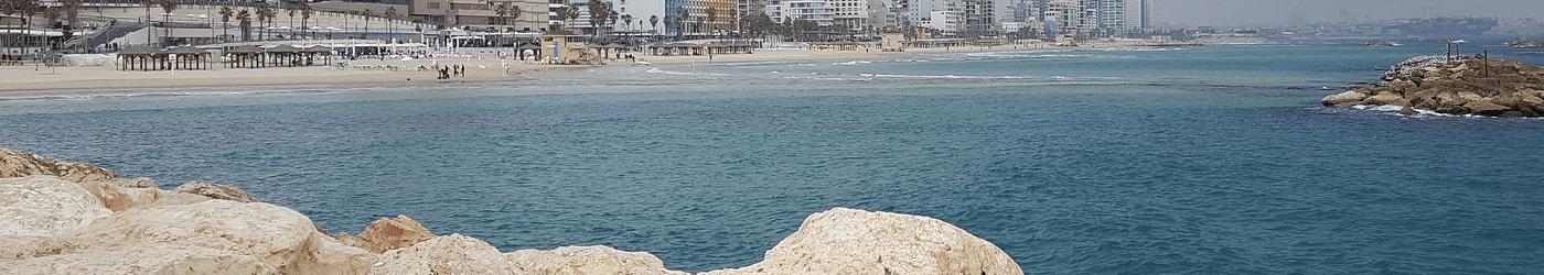 קורסים הנפתחים בפברואר בתל אביב והמרכז