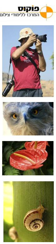 פוקוס המרכז ללימודי צילום - קורסי קיץ לצילום, למבוגרים ולנוער