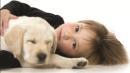 הכשרת מטפלים בעזרת בעלי חיים
