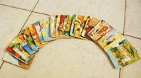 קורס קלפים טיפוליים
