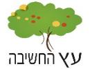 עץ החשיבה - הוראה מותאמת  - בשיטת  שלומית לויט