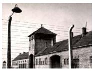 קורס - אושוויץ - תולדותיו של מחנה
