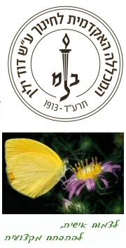 המכללה האקדמית לחינוך ע'ש דוד ילין - השתלמויות עובדי הוראה - תכנית להכשרת רכזי תקשוב - ירושלים